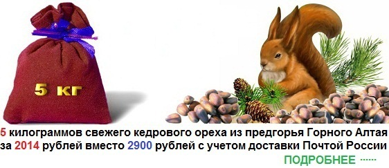 Скидка на кедровый орех, купить кедровый орех со скидкой